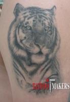 Татуировка тигра на плече - реализм